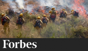 Firefighting Goes Beyond Extinguishing Flames: Inside The Admirable Vocation